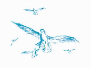 Illustration 5 Möwen
